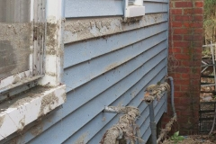 flood damage homes